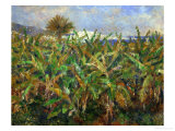 The Banana Plantation, 1881 Giclee Print by Pierre-Auguste Renoir
