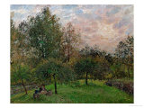 Apple Trees and Poplars in a Sunset, 1901 Reproduction procédé giclée par Camille Pissarro