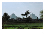 Pyramids of Cheops and Chefren, Old Kingdom, 26th BCE Giclee Print