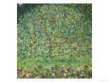 Æbletræ, 1912 Giclée-tryk af Gustav Klimt