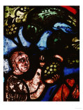 The Discovery of Wine, One of Noah&#39;s Sons Cutting a Grape, from the Noah Window, 13th Century Giclee Print