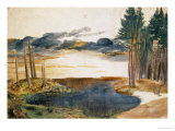 Pond in the Woods Giclee Print by Albrecht Dürer
