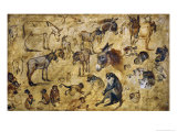 Animal Studies: Donkeys, Cats, Monkeys Giclee Print by Jan Brueghel the Elder