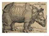 Rhinoceros, 1515, Etching Giclee Print by Albrecht D&#252;rer