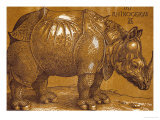The Rhinoceros, 1515, Pen and Ink, Wash Giclee Print by Albrecht Dürer