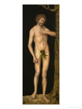 Adam Giclee Print by Lucas Cranach the Elder