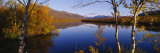 Reflection of Trees and Mountains in a River, Vistas River, Nikkaluokta, Lapland, Sweden Photographic Print by  Panoramic Images