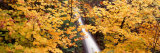 Horsetail Falls, Columbia River Gorge National Scenic Area, USA Photographic Print by  Panoramic Images