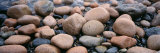 Rocks, Acadia National Park, Maine, USA Photographic Print by  Panoramic Images