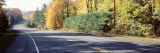 Trees along a Road, New York, USA Photographic Print by Panoramic Images