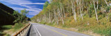 Trees along a Road, Route 73, Adirondack Mountains, New York State, USA Photographic Print by Panoramic Images
