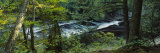 River Flowing through the Forest, Presque Isle River, Porcupine Mountains, Michigan, USA Photographic Print by  Panoramic Images