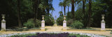 Trees in a Garden, Murillo Gardens, Seville, Spain Photographic Print by  Panoramic Images