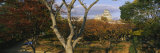 Trees in Front of a Castle, Himeji Castle, Himeji, Honshu, Japan Photographic Print by  Panoramic Images