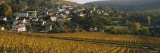 Bourgogne, France Photographic Print by  Panoramic Images