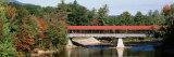 Covered Bridge over Saco River, Conway, New Hampshire, USA Photographic Print by  Panoramic Images