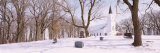 Trees in Front of a Church, Otter Tail County, Minnesota, USA Photographic Print by  Panoramic Images