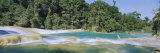 Water Flowing in the Forest, Agua Azul, Chiapas, Mexico Fotografisk trykk av Panoramic Images,