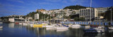 Boats at a Harbor, Oriental Parade, Wellington, North Island New Zealand Photographic Print by  Panoramic Images