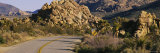 Road Running through a Landscape, Joshua Tree National Monument, California, USA Photographic Print by  Panoramic Images