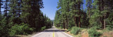 Highway Passing through the Forest, Highway 89, California, USA Photographic Print by  Panoramic Images