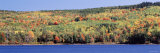 Trees along a Lake, Eagle Lake, Acadia National Park, Maine, USA Photographic Print by  Panoramic Images