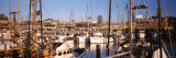 Fishermans Wharf, San Francisco, California, USA Photographic Print by Panoramic Images 
