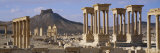 Colonnades on an Arid Landscape, Palmyra, Syria Fotografie-Druck von Panoramic Images 