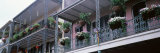 Potted Plants Hanging from Balconies, French Quarter, New Orleans, Louisiana, USA Photographie par Panoramic Images