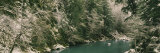 Trees along a Riverbank, Elwha River, Olympic National Park, Washington State, USA Photographic Print by  Panoramic Images