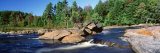 River Flowing through the Forest, Moose River, Adirondack State Park, New York, USA Photographic Print by Panoramic Images