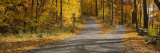 Autumn Leaves on the Road, Connecticut, USA Photographic Print by  Panoramic Images