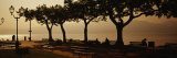 Benches in a Park, Torri del Benaco, Lake Garda, Italy Photographic Print by  Panoramic Images