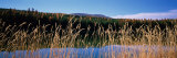 Reflection of Hills on Water, Rainy Lake, Montana, USA Photographic Print by  Panoramic Images