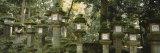 Stone Lanterns, Kasuga Taisha, Nara, Japan Photographic Print by  Panoramic Images