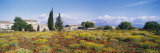 Buildings in a Field, Majorca, Spain Photographic Print by  Panoramic Images