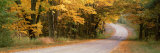 Country Road Passes through a Forest, Empire, Michigan, USA Photographic Print by Panoramic Images