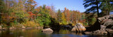 Deciduous Trees along Moose River, Adirondack Mountains, Adirondack State Park, New York, USA Photographic Print by  Panoramic Images