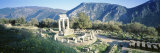 Greece, Delphi, the Tholos, Ruins of the Ancient Monument Photographic Print by  Panoramic Images