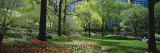 Trees in a Park, Central Park, Manhattan, New York, USA Photographie par Panoramic Images