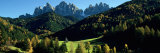 Trees on a Landscape, Dolomites, Funes Valley, le Odle, Santa Maddalena, Tyrol, Italy Photographic Print by Panoramic Images