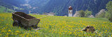 Wheelbarrow in a Field, Austria Photographic Print by  Panoramic Images