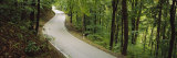 Empty Road Running through a Forest, Stuttgart, Baden-Wurttemberg, Germany Photographic Print by  Panoramic Images