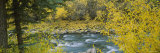 San Miguel River, San Juan Mountains, San Miguel County, Colorado, USA Photographic Print by  Panoramic Images