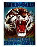 Barnum & Bailey, 1916 Affiche