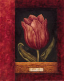 Red Tulip Poster by Herve Libaud