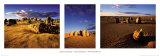The Pinnacles, West Australia Print by Neville Prosser