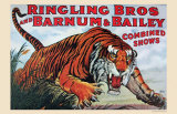 Ringling Bros and Barnum & Bailey Prints