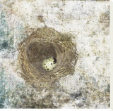 Nest Egg Stretched Canvas Print by Susan Friedman