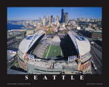Seattle Seahawks- Quest Field Lámina